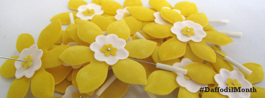 Daffodil Pins Facebook Cover - CoverJunction