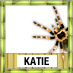 Katie To Win